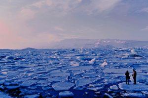 Cruise the Arctic
