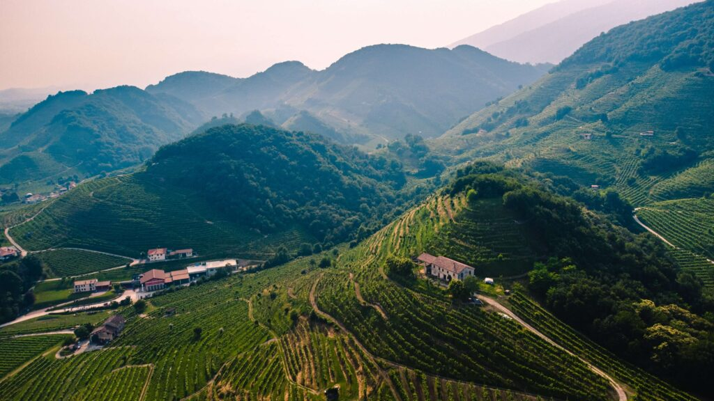Italian countryside scenery of a vinery and hillside view